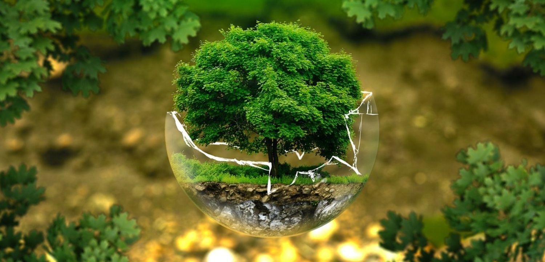 tourisme durable terre