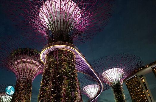 singapour nature environnement