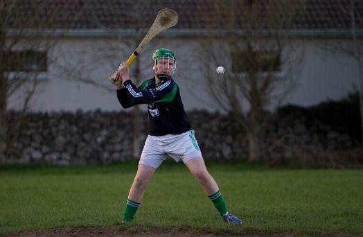 hurling sport irlande