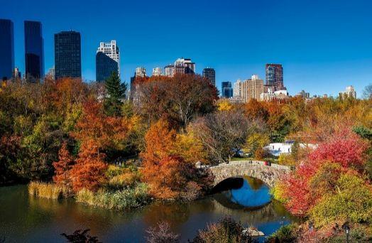 new york usa central park