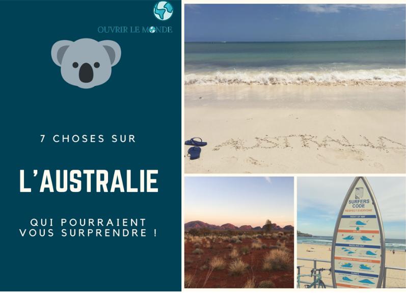 L'Australie : koalas et autres curiosités - Séjour en Australie CEI (copyrignt @Annabelle Dupé)