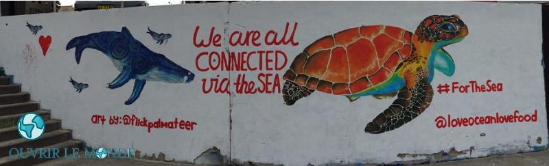 Fresque à Bondi beach - Séjour en Australie CEI (copyrignt @Annabelle Dupé)