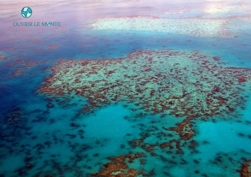 Barrière de corails en Australie - CEI