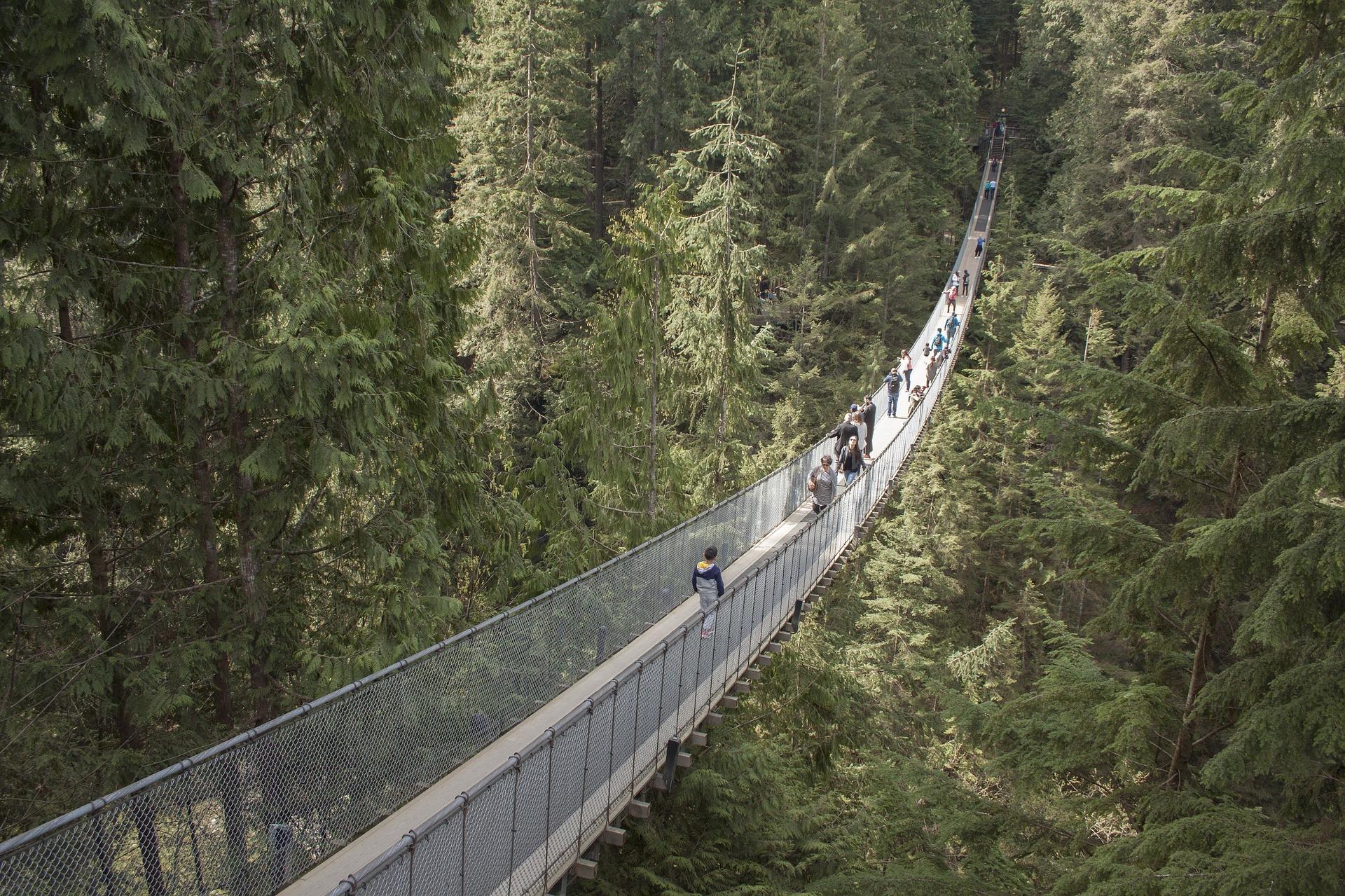 Travailler autrement au Canada-Pont suspendu de Capilano à Vancouver