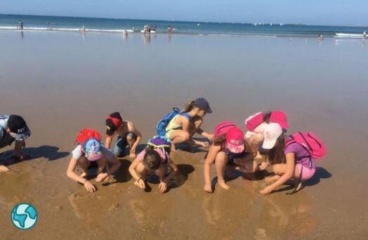 ocean colonie mer vacances
