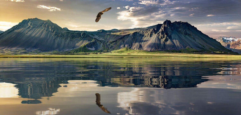 nouvelle zelande paysage nature