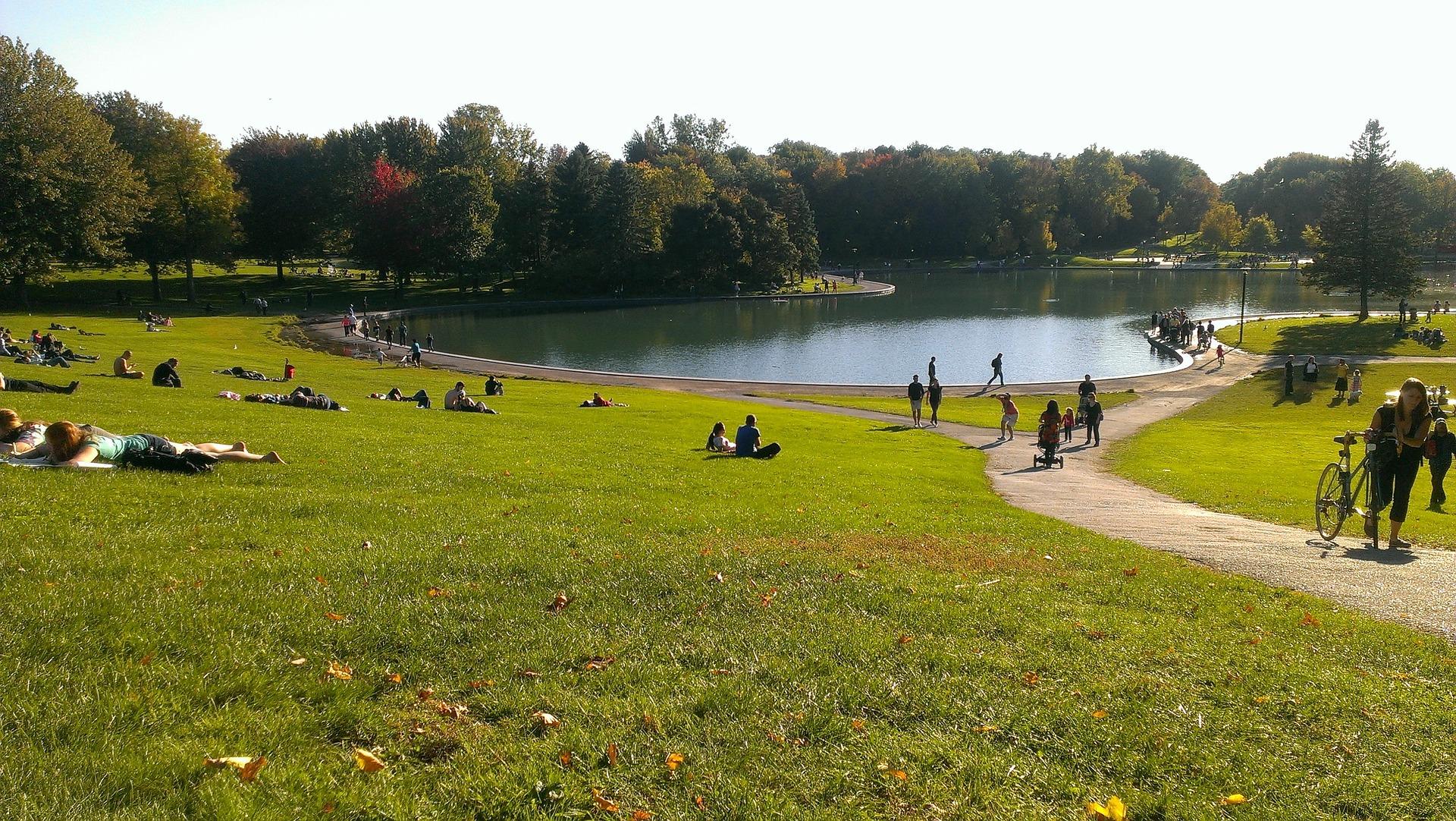 Travailler autrement au Canada-Le parc Mont-Royal de Montréal