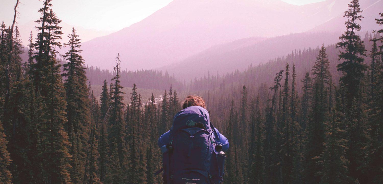 Voyage en nature