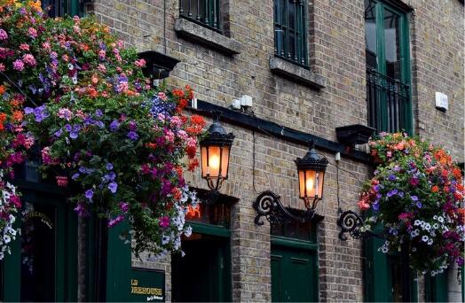 galway quay street quartier