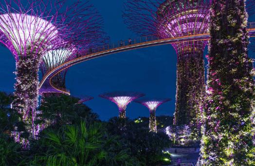 jardin baie singapour